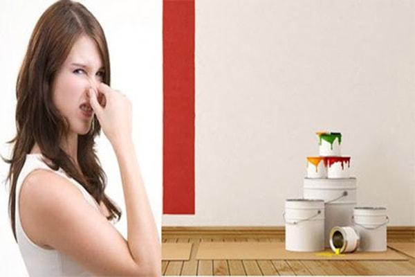 Cách khử mùi sơn nhà mới hiệu quả, nhanh chóng